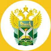 Российская  Таможенная <br/>академия